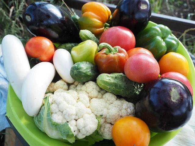 Wegetarianizm – zdrowa dieta?