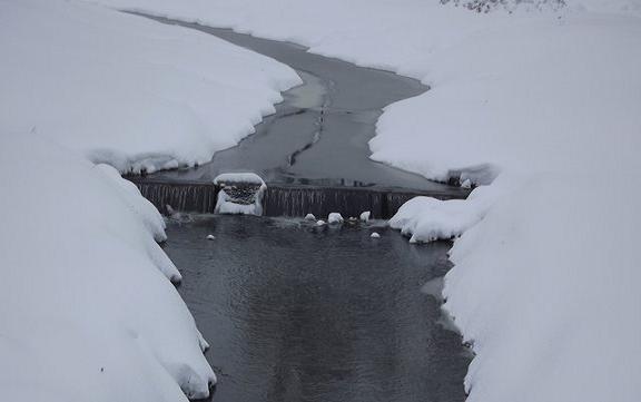 Uroki zimy – wiersze Wiesława Lickiewicza