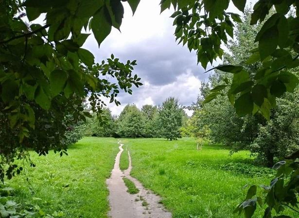 Spacerujcie ze mną – wiersze Wiesława Lickiewicza