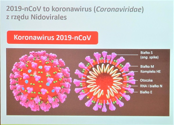Wirus z Chin