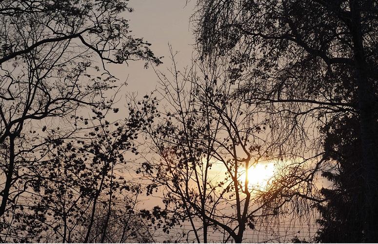 Głęboka jesień – wiersze Joanny Pisarskiej