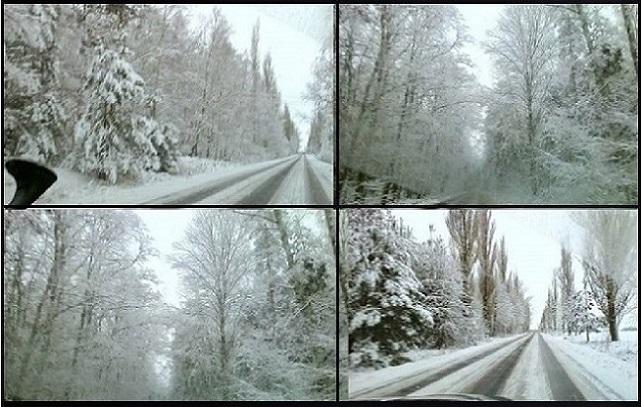 Zimowe zauroczenia – wiersze Jadwigi Zgliszewskiej