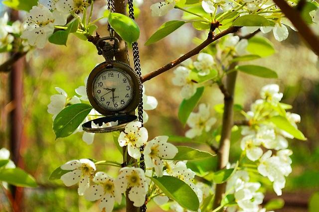 Czas… – wiersze Wiesława Lickiewicza