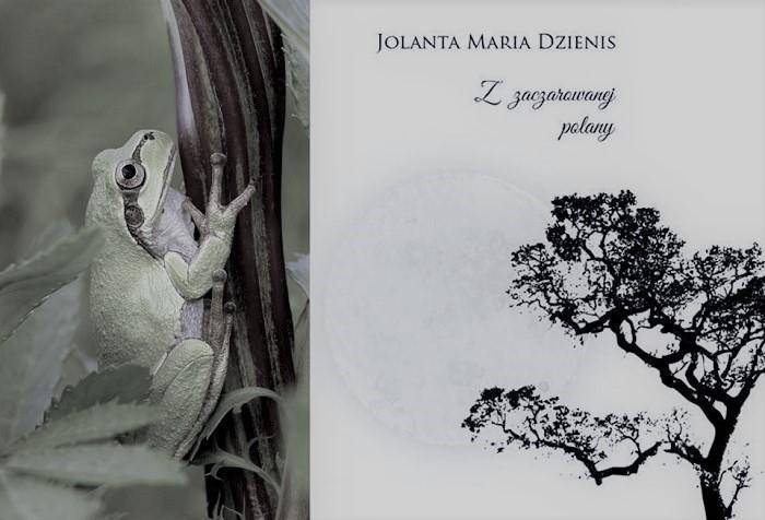 Bogdan Dmowski czyta wiersze Jolanty Marii Dzienis – Rzekotka
