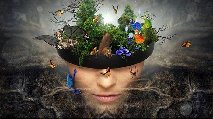 Marzenia, jak ptaki – wiersze Podlaskich Poetów